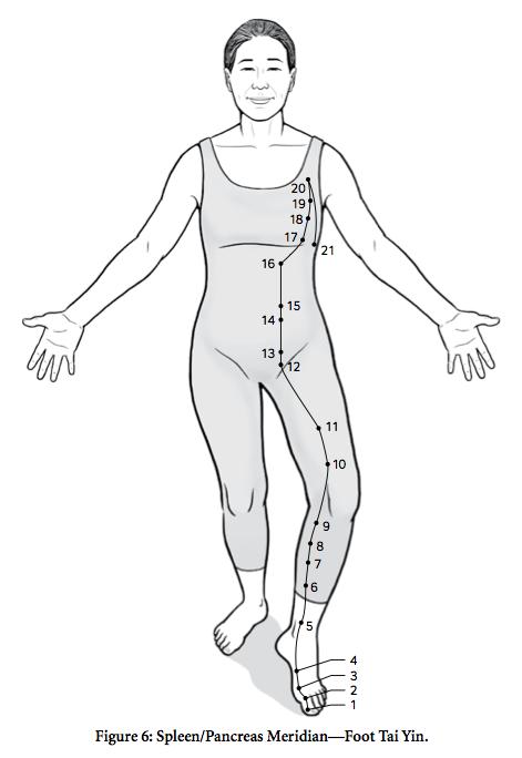 mgq-spleen